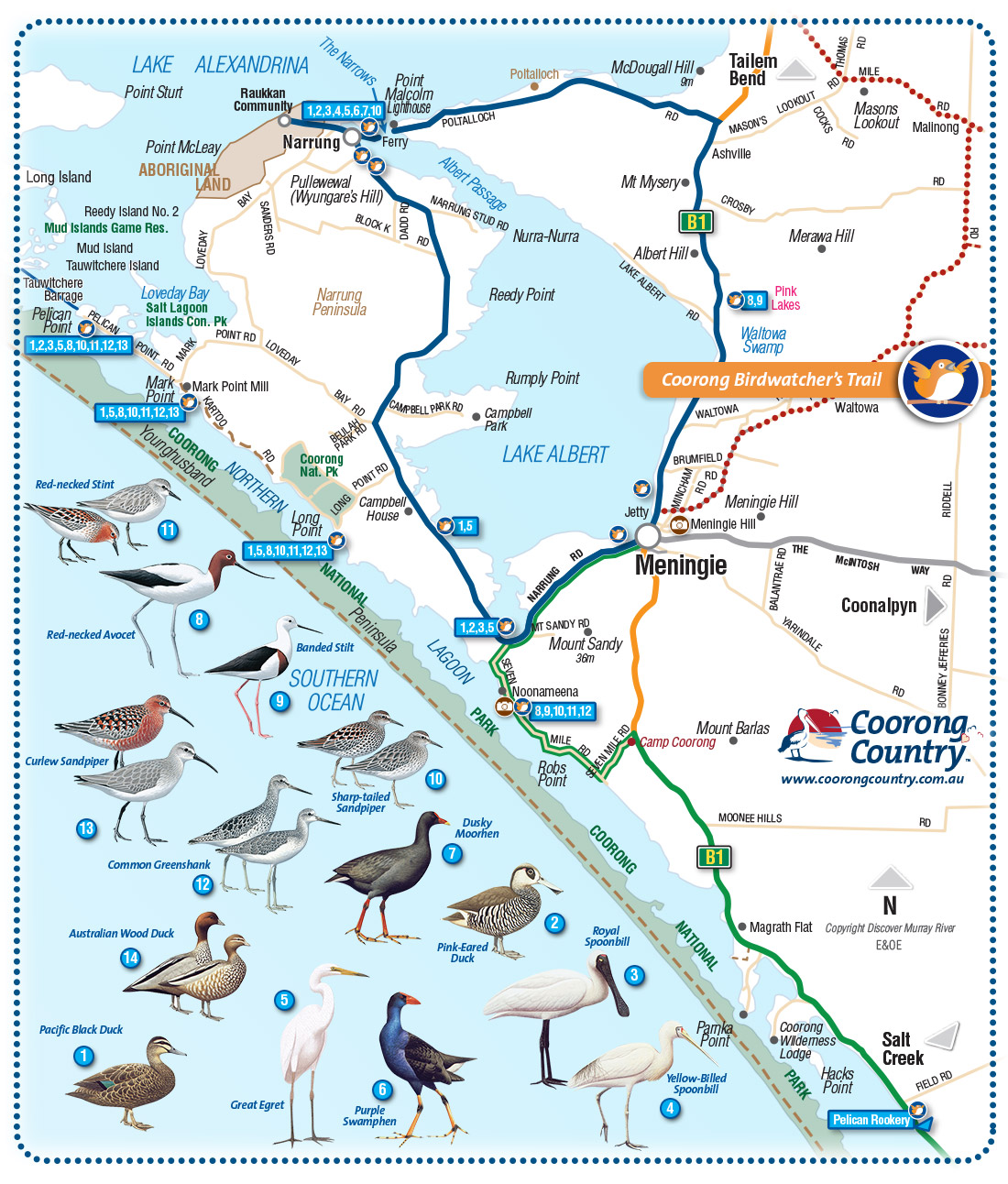 Coorong Country and Meningie Maps South Australia