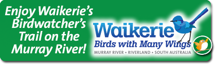 Waikerie Birdwatcher's Trail